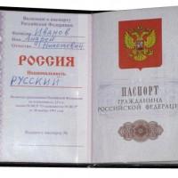вкладыш в паспорт